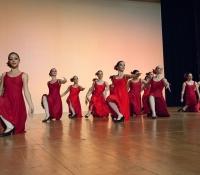 """""""Flamenco"""" (3)"""